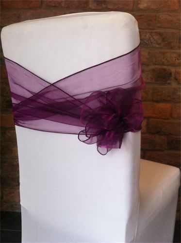 In case we have chair sashes - a bit of a twist on the typical sashes I've seen before