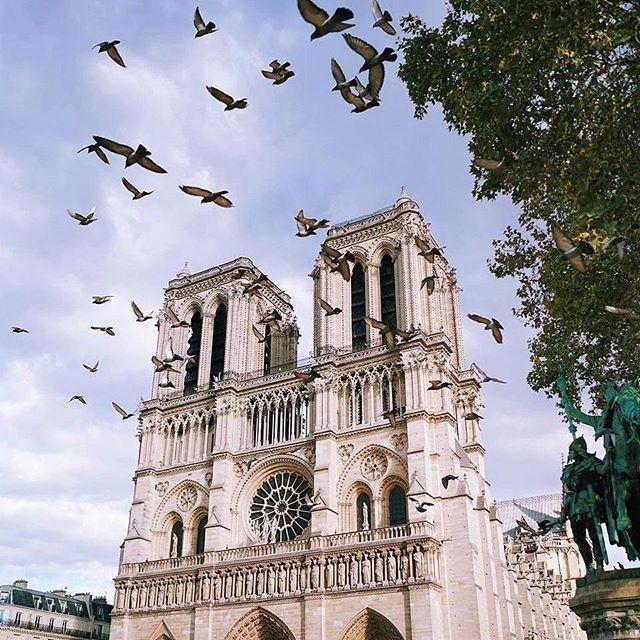 Paris, France  Follow @travel.dost @travel.dost❤ #wanderlust #ilovetravel #writetotravel ##traveldeeper #travelstroke #travelling #trip #traveltheworld #igtravel #getaway #travelblog #instago #travelpics #tourist #wanderer #wanderlust #travelphoto #travelingram #arountheworld #tourist#solotravel #instago #ig_worldclub #worldcaptures #tourism #worldplaces #worldingram #traveller #traveler #hotel #luxuryhotel