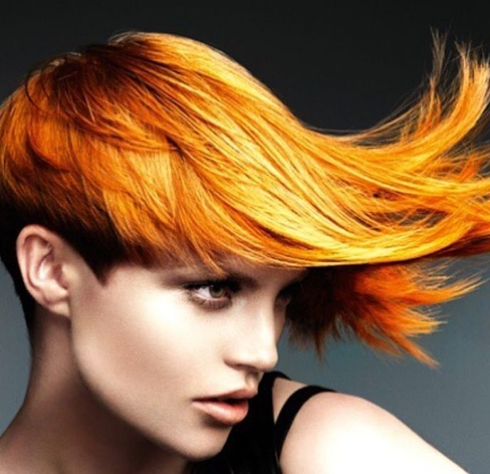 amazing hair styles 17 best images about color us happy on 3386