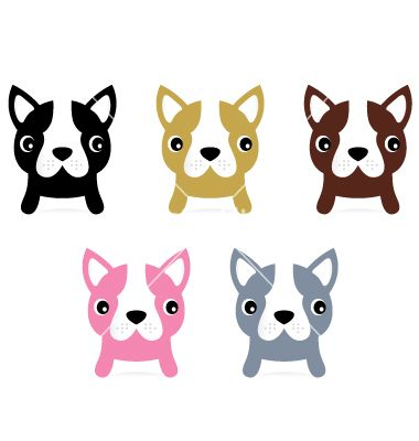 Little french buldog puppies set isolated on white vector 1262174 - by lordalea on VectorStock®