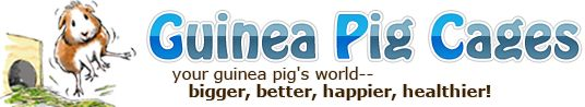 Guinea Pig Cages, Care, Store, Photos of Guinea Pigs and More Forum!