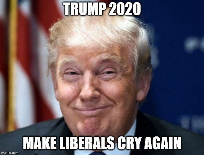 22 Trump 2020 Memes - Rickio MeMes in 2020 (With images) | Memes ...