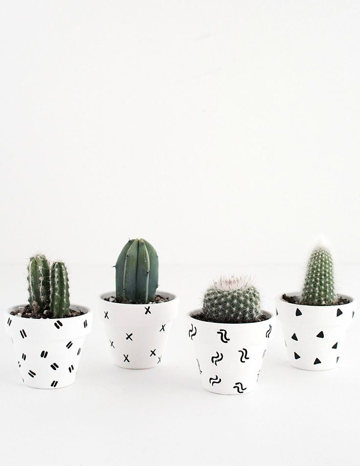 DIY- Mini Patterned Plant Pots-2