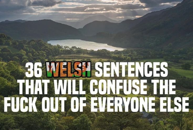 36 Sentences That Will Confuse The Fuck Out Of Everyone Who Isn't From Wales