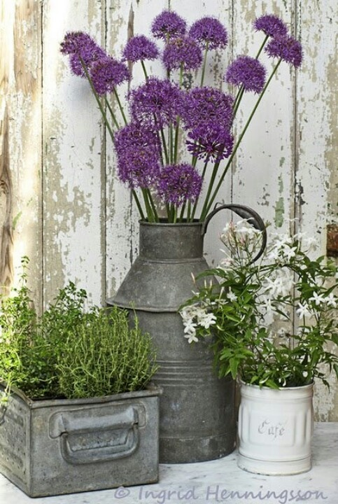 Purple in a Metal Vase