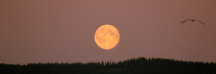 Full moon... Magical moments! :)