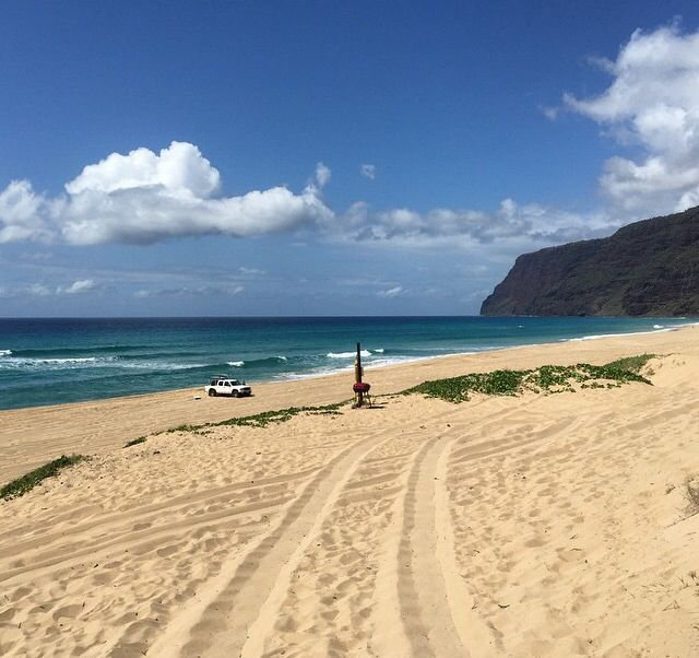 Sandy Beach: 28 Best Images About White Sandy Beach Of Hawaii On