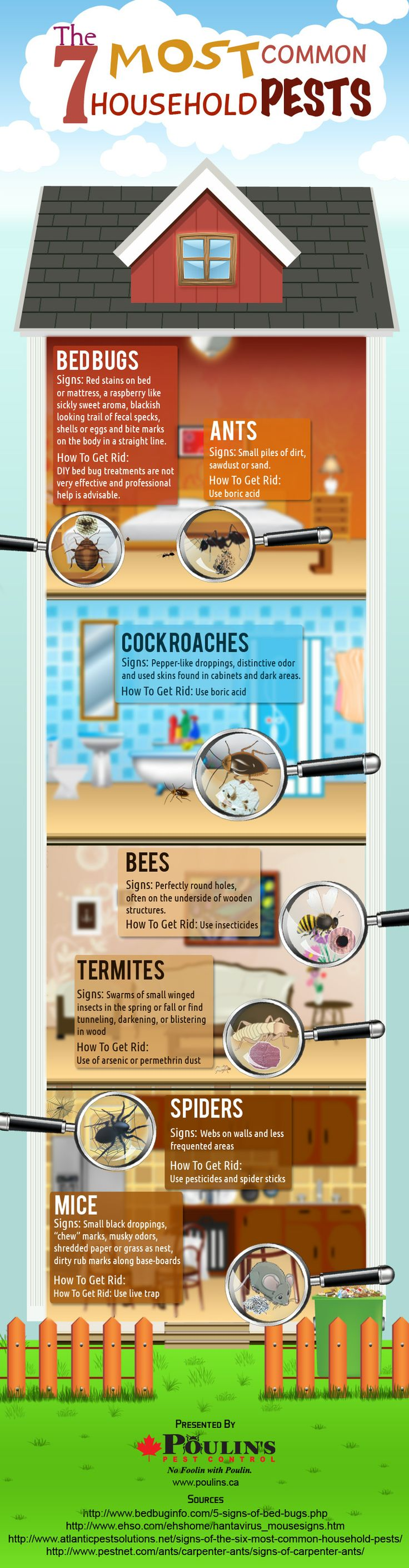 The 7 Most Common Household Pests #Infographics #Image — Lightscap3s.com