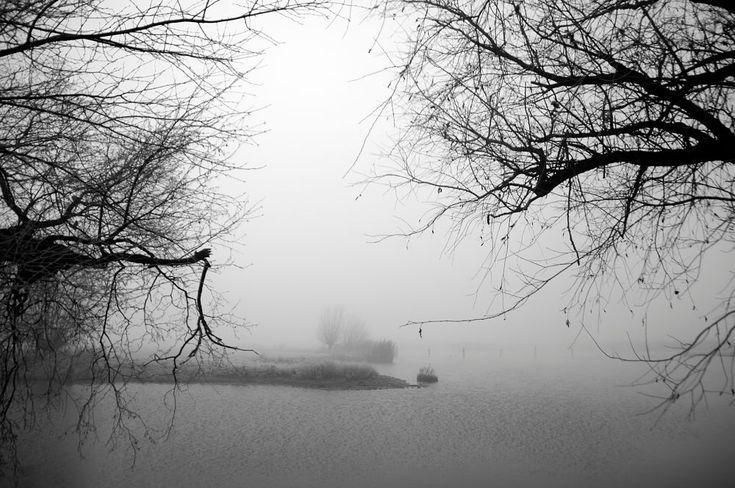Misty morning by Watze D. de Haan