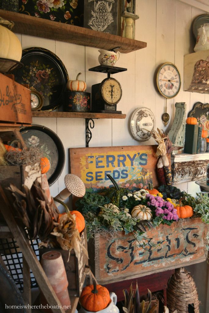 Fall In A Ferryu0027s Seeds Box Ferryu0027s Seeds Box Planted With Ornamental Kale,  Gourds, · Potting BenchesPotting ShedsVintage GardeningGarden ...