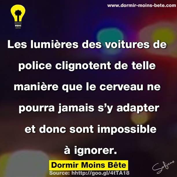 Les lumières des voitures de police clignotent de telle manière que le cerveau ne pourra jamais s'y adapter et donc sont impossible à ignorer.