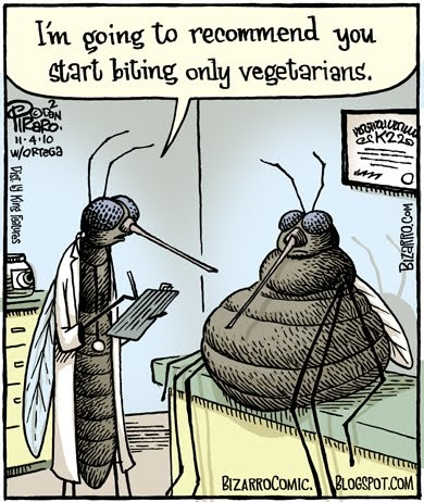 Silly Mosquito Jokes