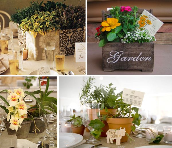 Pictures Of Potted Centerpieces 119