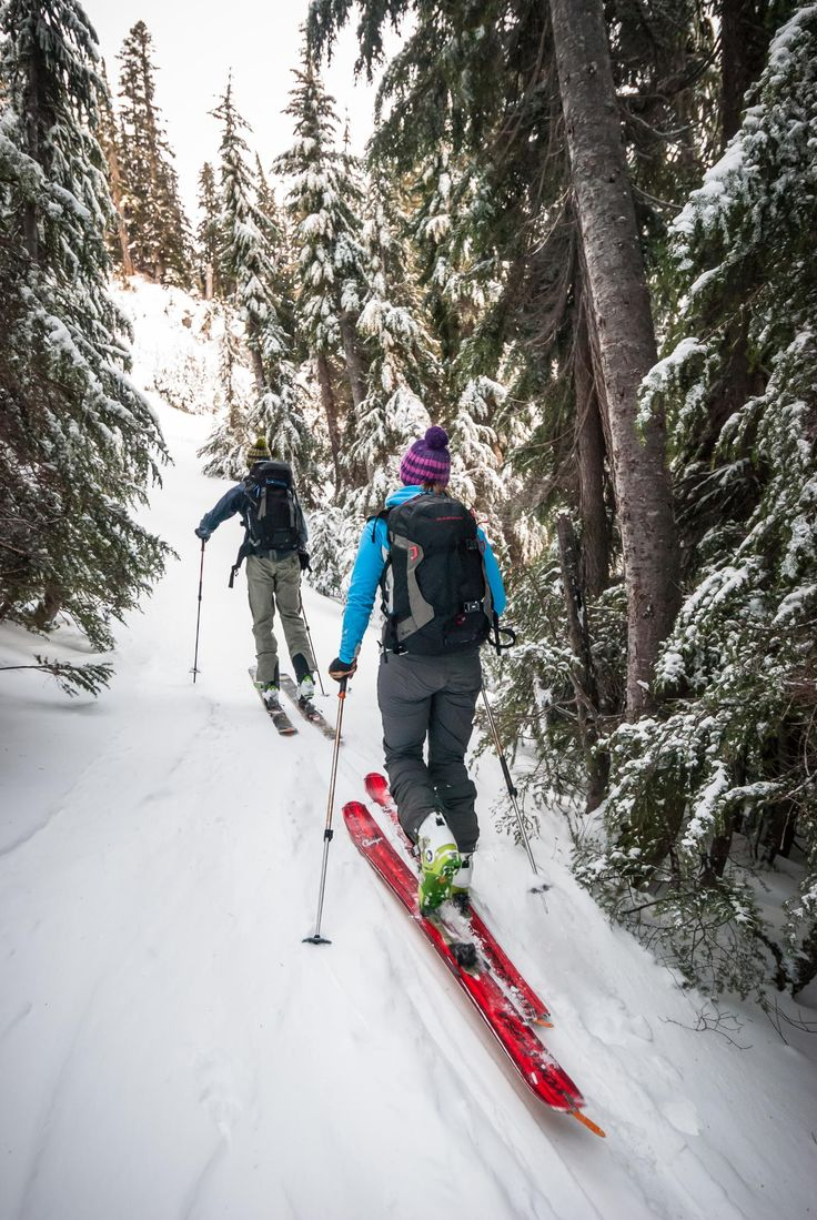 Ski touring. Yes please!
