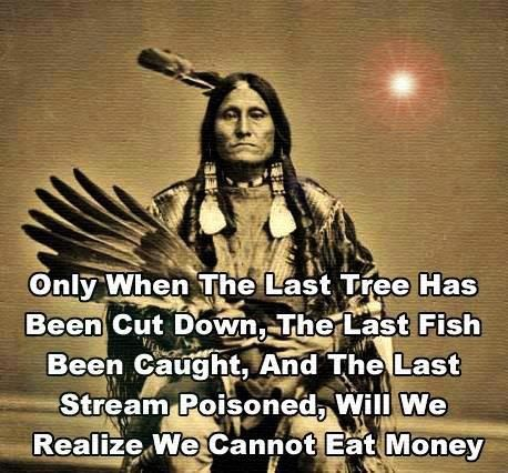 Only when the last tree has been cut down, the last fish been caught and the last stream poisoned, will we realise we cannot eat money. Native American