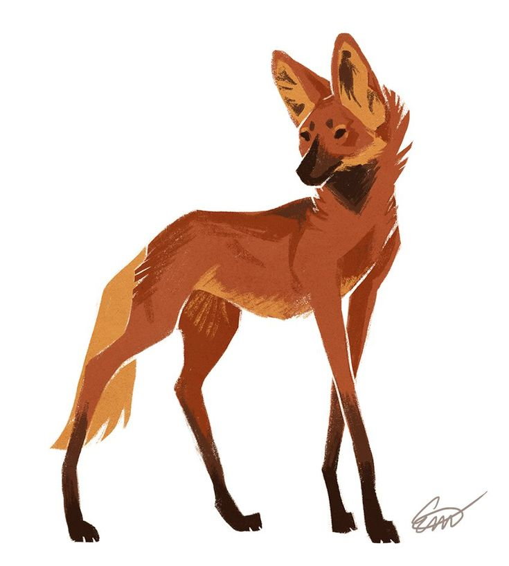 Maned Wolf by Makirou.deviantart.com on @DeviantArt                                                                                                                                                                                 More
