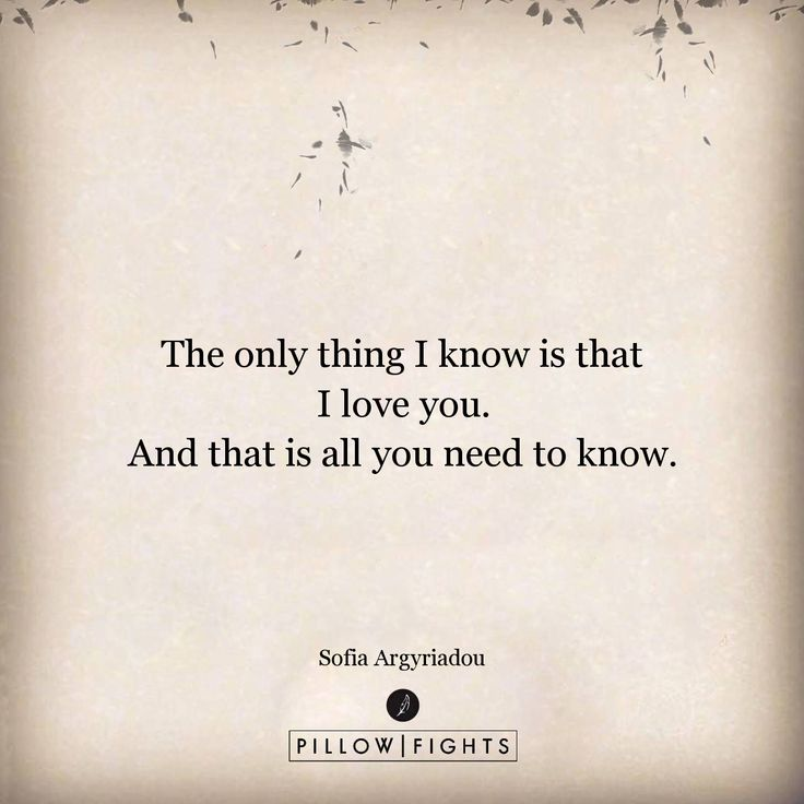 The only thing I know | Pillowfights.co.uk
