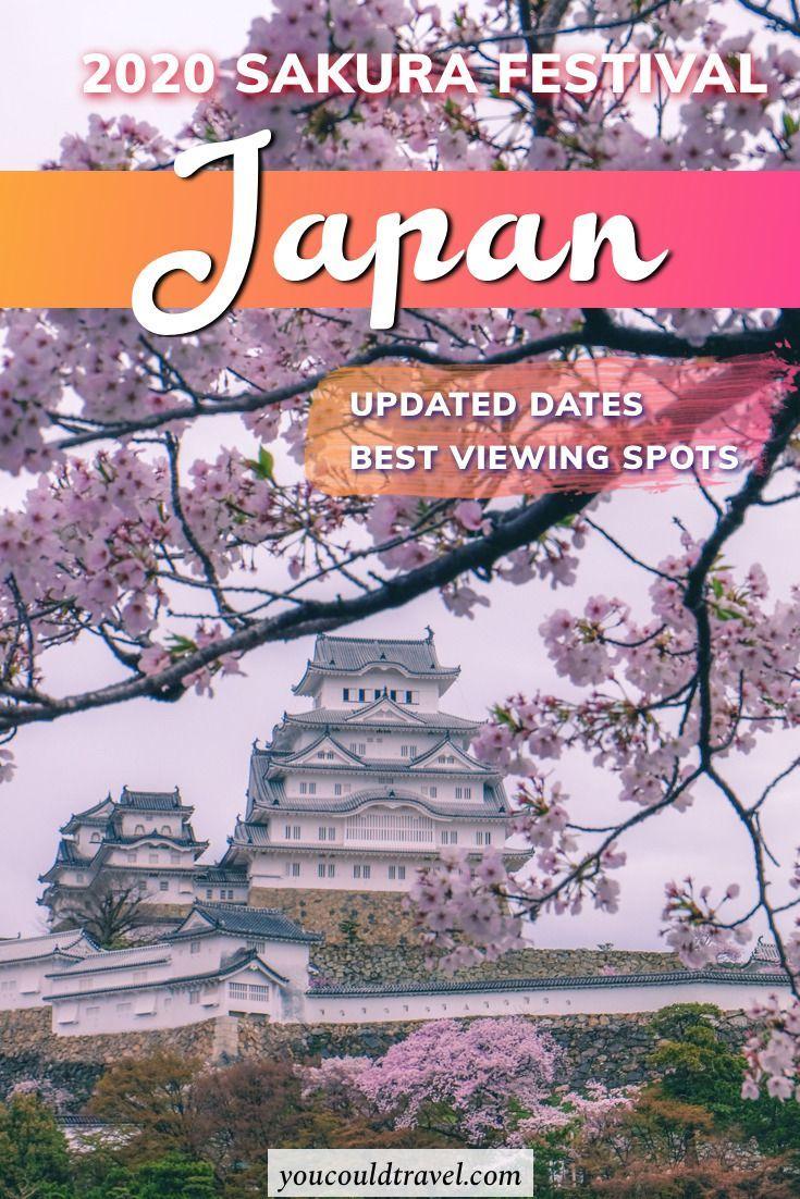 Japan 2020 Cherry Blossom Festival Updated Dates Cherry Blossom Japan Japan Cherry Blossom Festival
