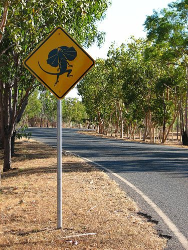 Road sign, Lizards in area