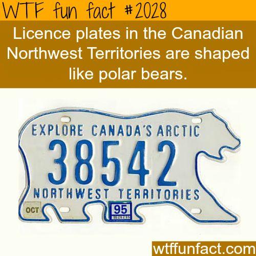 Northwest Territories Canada - WTF fun facts