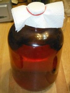 Vinegar is GREAT for just about everything!  Why buy when you can DIY! Make Your Own Vinegar