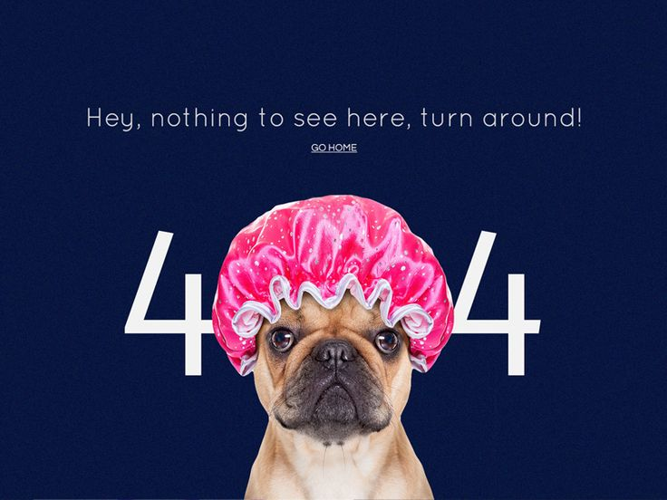 Funny 404 Page Concept
