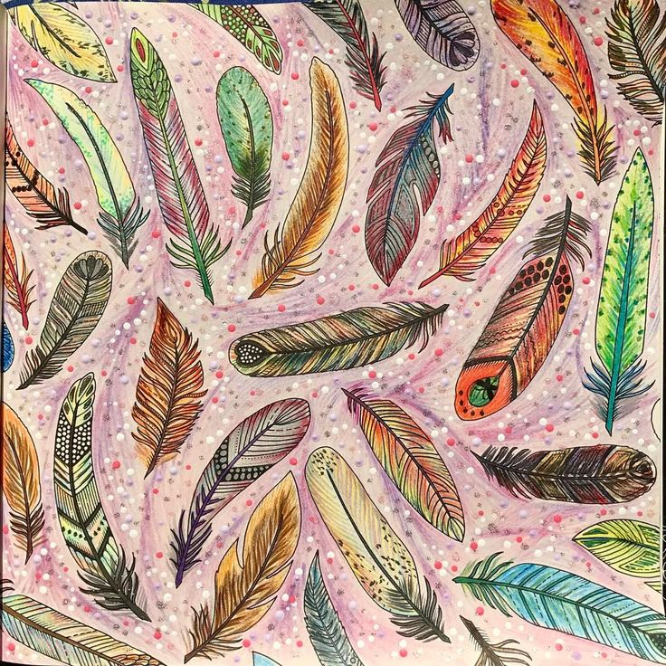 Fantasy Feathers  Penas de Fantasia Livro: Floresta Encantada  Enchanted Forest Artist: @johannabasford  #feathers #penas #enchantedforest #florestaencantada #adultcoloring #adultcolouring #adultcoloringbook #artoftheday #becreative #colorful #coloring #coloringbook #doodle #drawing #fabercastell #glitter #johannabasford #livrodecolorir #mindfulness #jardimsecreto #secretgarden #zentangle