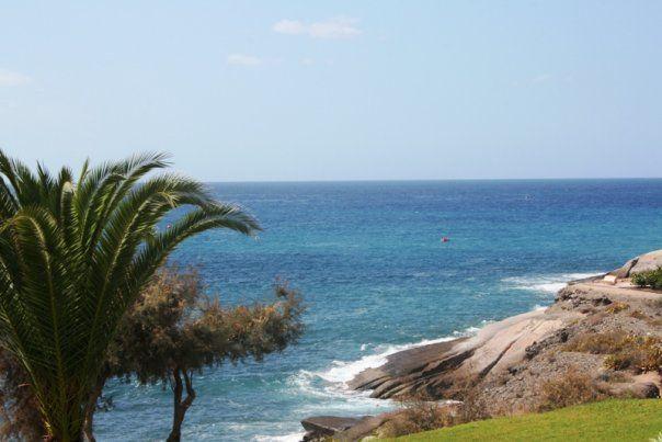 Costa de Adeje. Tenerife, Islas Canarias. España