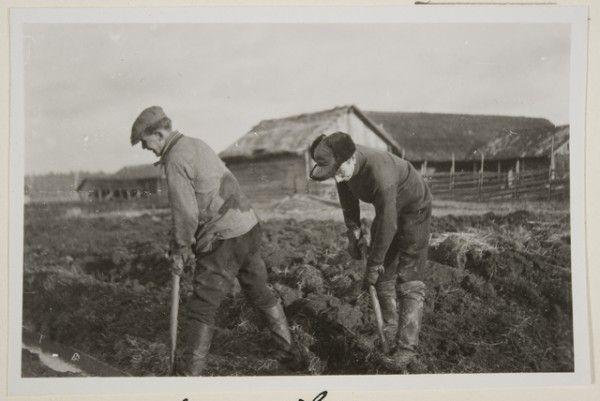 Aarne ja Martti Kaltula ojankaivuussa. Oksanen Aino, kuvaaja 1928