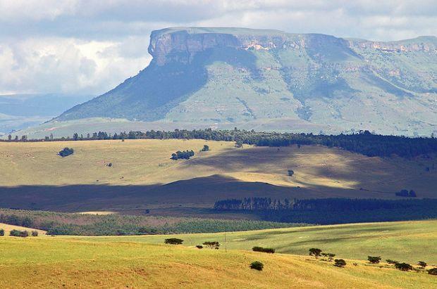 Pour les Régions des végétations (les prairies), ma mot de vocabulaire est Afrique de sud. Je choisis c'est mot de vocabulaire et photo, parce que les prairies sont tellement dans l'Afrique de sud alors parce que je fais les prairies, je veux faire l'Afrique de sud pour ma mot de vocabulaire et photo.