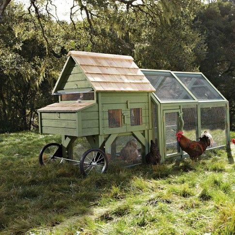 Alexandria Chicken Coop & Run from Williams Sonoma - brilliant!