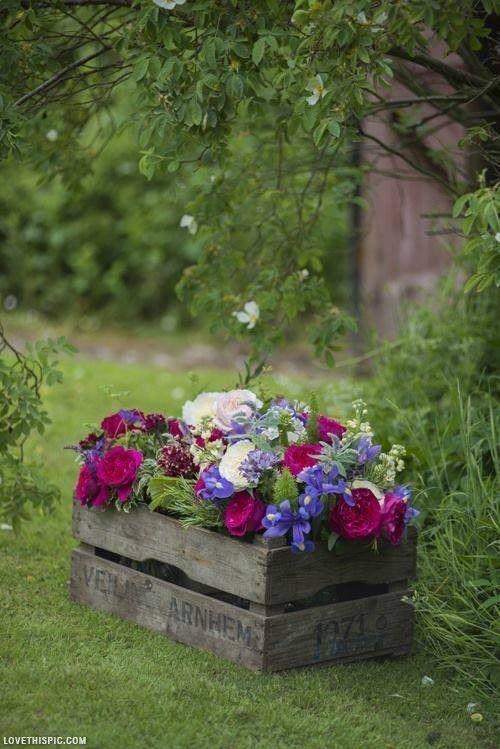Kwiaty doniczkowe w ogrodzie? Stwórz oryginalne kompozycje DIY.