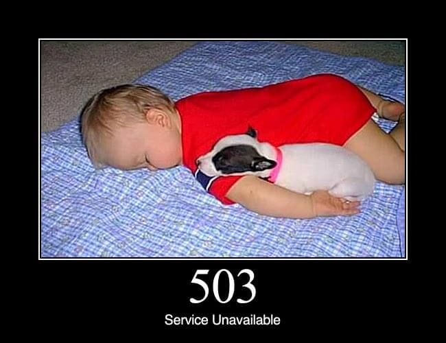 503 Service Unavailable: The server is currently unavailable (because it is overloaded or down for maintenance). Generally, this is a temporary state.