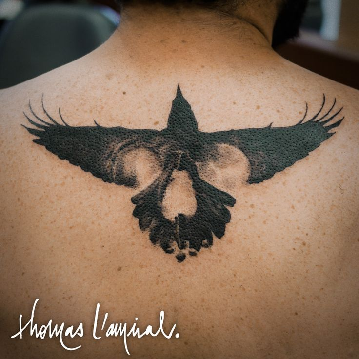 facebook.com/lamiralthomas - instagram.com/thomas_l_amiral