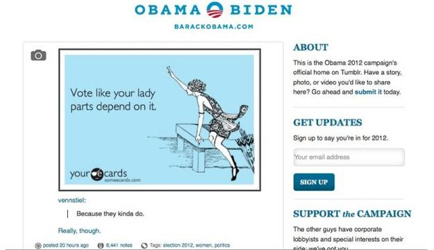 "Obama Campaign Removes ""Lady Parts"" Image.... [rather disrespectful ad]"