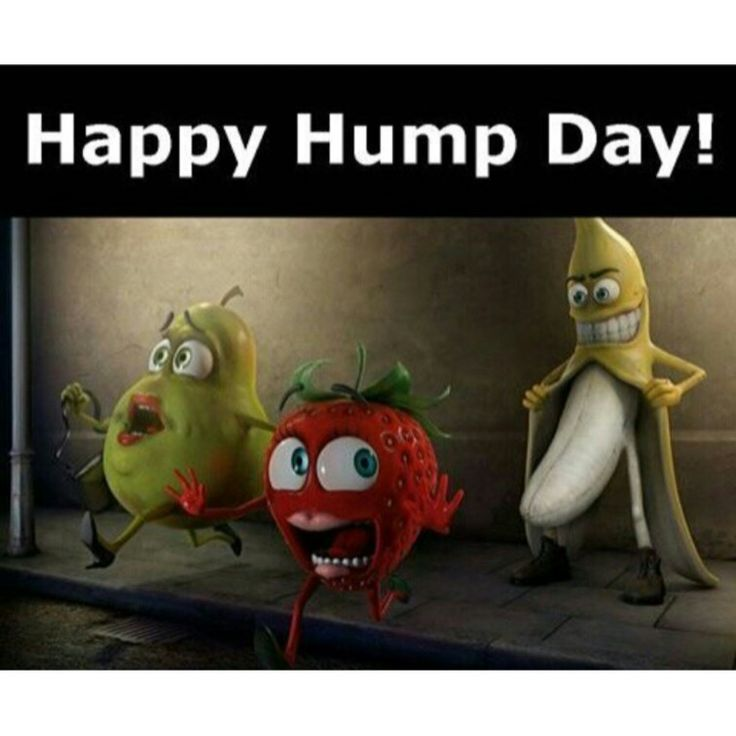 x rated hump day