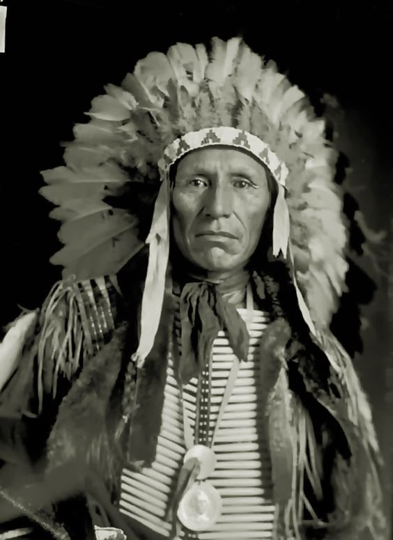 Cherokee Facial Features >> 5177 best Cherokee People images on Pinterest | Native ...