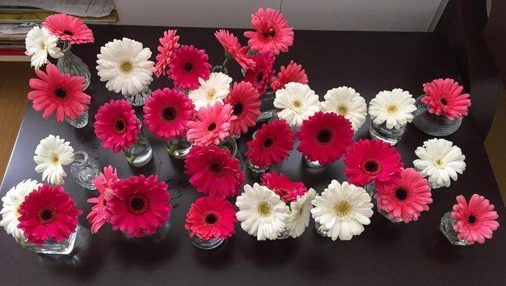 arranjos para as mesas do restaurante @casaramona  #oitominhocas #flores #decoração #gerbera #ramona #casaramona