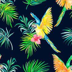 마코앵무새 연속무늬. 검정색 배경 vector art illustration