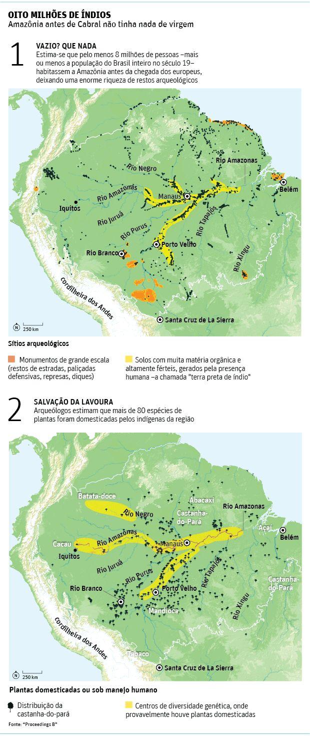 Antes de Cabral, Amazônia teve mais de 8 milhões de índios - 03/12/2015 - Ciência - Folha de S.Paulo