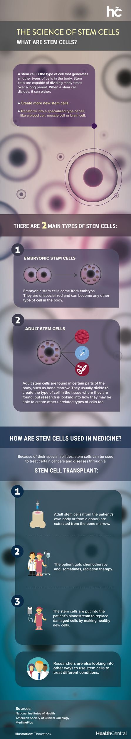Infographic: The Science of Stem Cells - More Conditions