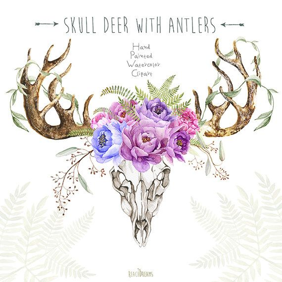 Skull Deer With Antlers. Hand Painted Horns, Fern, Peony, Sprigs, Wild, Boho…