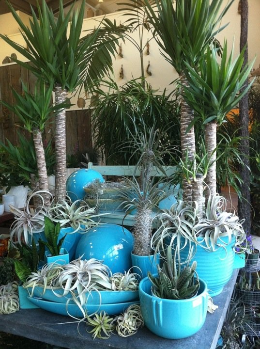 Indoor Garden Center 304 best garden center merchandising display ideas images on gardencenter design workwithnaturefo