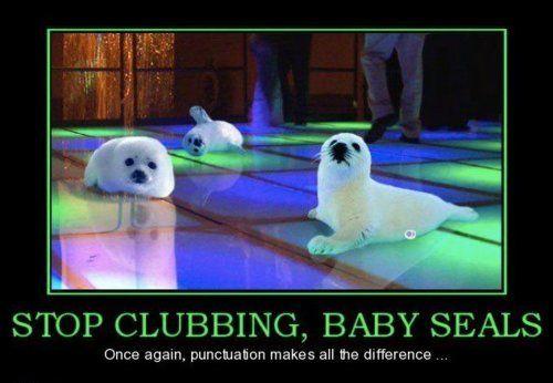 Stop clubbing, baby seals!