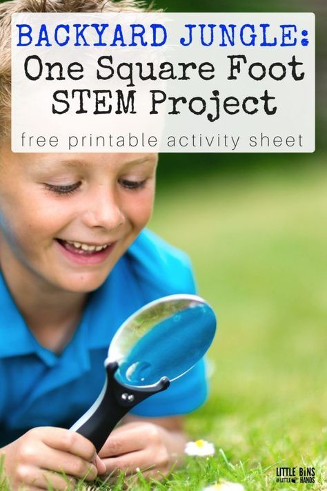Square Foot Outdoor STEM Project & Back Yard Jungle Activity