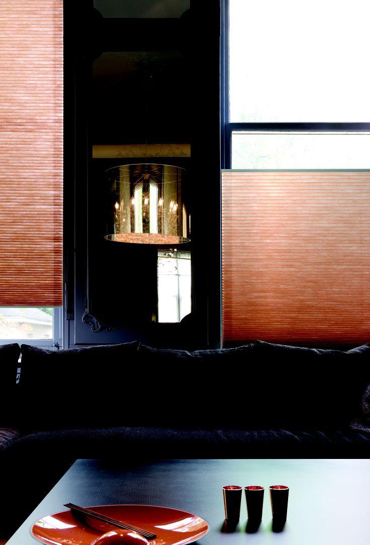 http://www.onelwindowdressings.nl/duette/