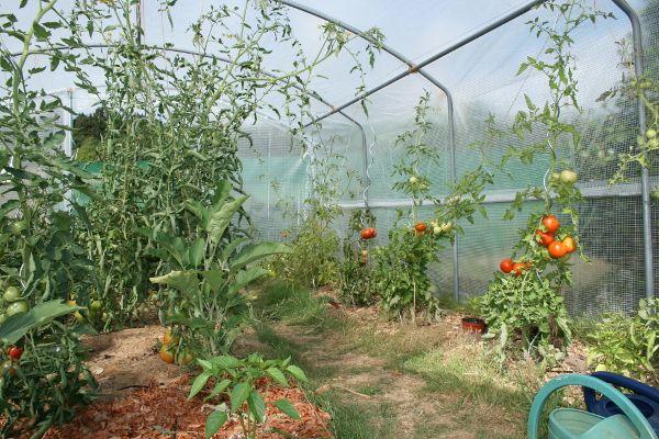 Montage De La Serre Tonneau 4 Saisons Plus Potager Idees Jardin Et Jardins