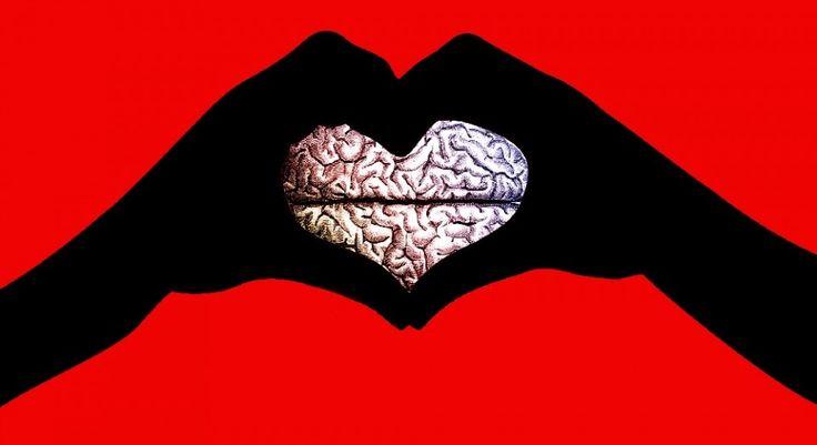 Se ha realizado una investigación para conocer qué partes del cerebro son las que más se activan al estar enamorados.  En los resultados se obtuvo que son el núcleo caudado y el sistema de recompensa, los que más intervienen.  Este descubrimiento ha cambiado la forma de pensar sobre el amor.