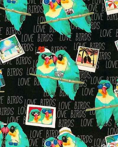 147 Best Images About Birds Amp Butterflies On Pinterest