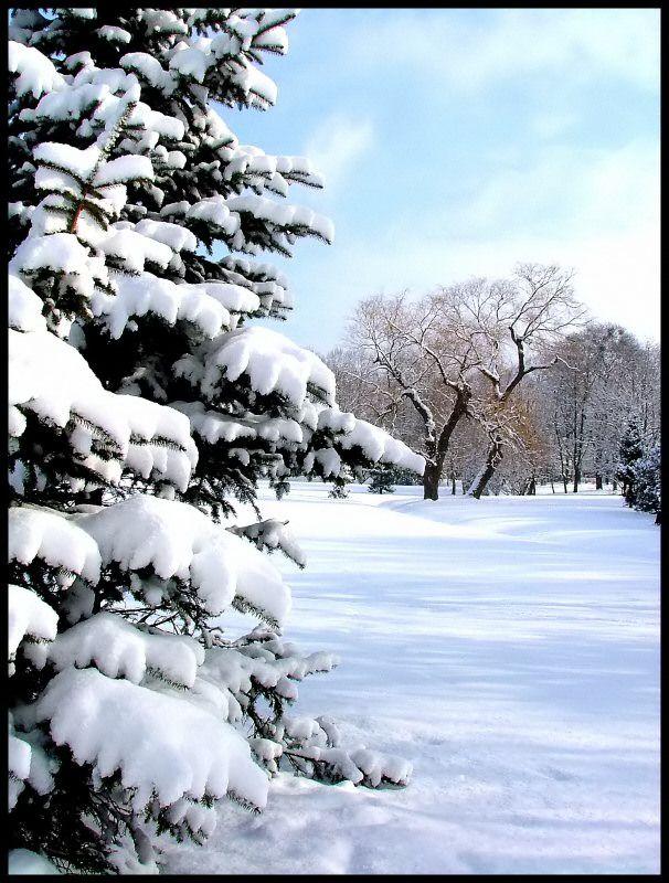 Fresh Snow, Kajka's Park, Elblag, Poland